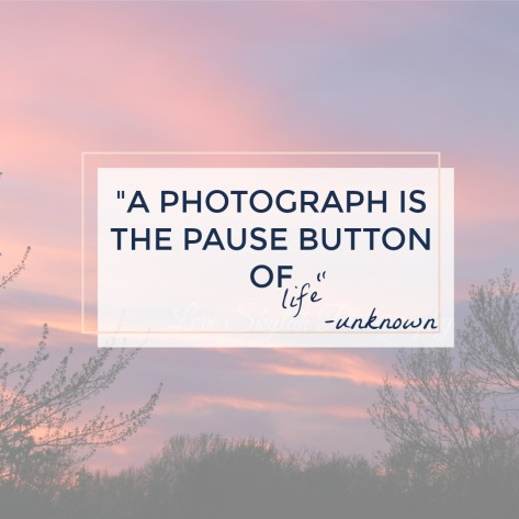 Pause button-qt